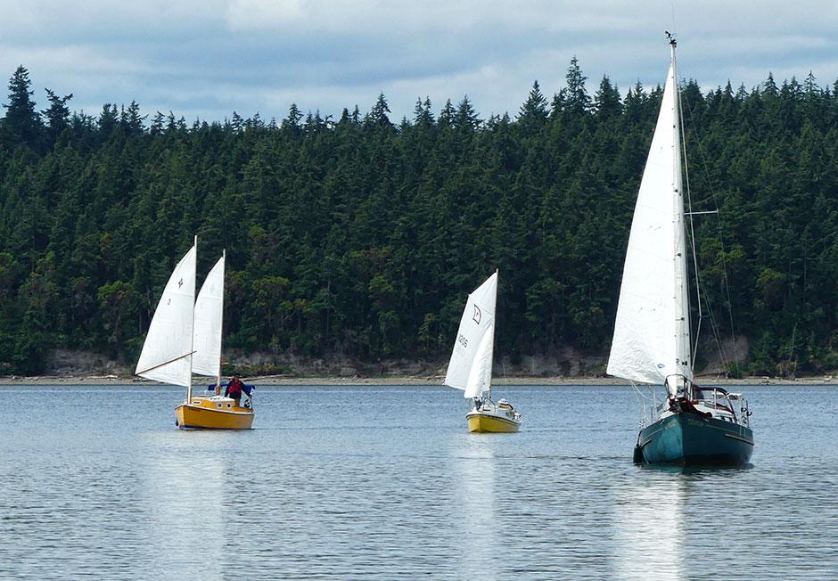 Three small sailboats under sail.